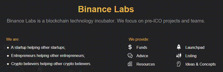 Screenshot from labs.binance.com